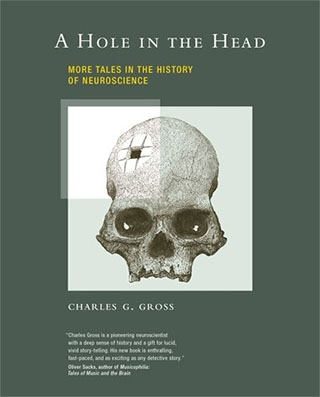 "Cover image for Charles G. Gross's ""A Hole in the Head: More Tales In the History of Neuroscience"""