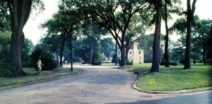 Riverside, Illinois, a typical 19th-century pastoral suburb outside Chicago. Designed by Olmsted and Vaux, it is a quintessential example of a suburban ideal. Image: Landscape Architecture Collection, Environmental Design Visual Resources Center, University of California, Berkeley